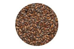 Солод ячменый Шоколадный EBC 900 (Курский солод)